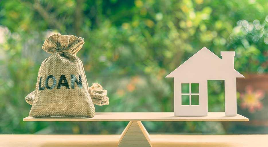 Development finance lenders and borrowers